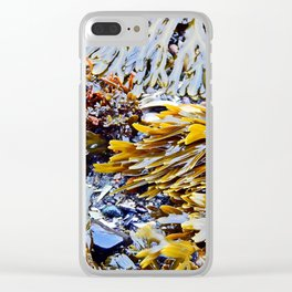 Sea Plants of the St-Lawrence Clear iPhone Case