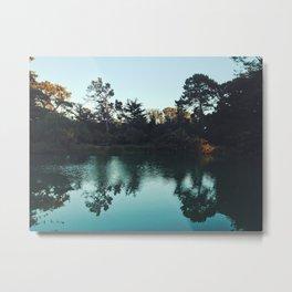 31st Lake Metal Print
