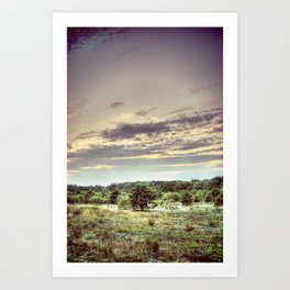 Bog at Dusk Art Print