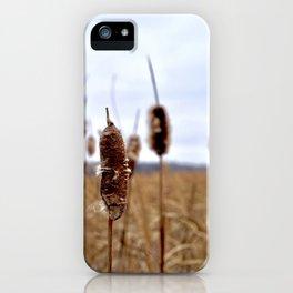 Autumn at Riding Mountain iPhone Case
