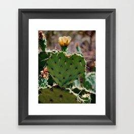 Sonoran Love Framed Art Print