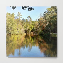 Autumn Forest Reflections Metal Print