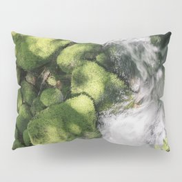 Feel the Wetness in the Air Pillow Sham