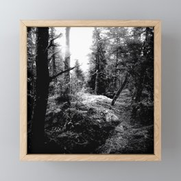 Fall Forest Morning Framed Mini Art Print