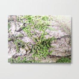 Wild Moss Metal Print
