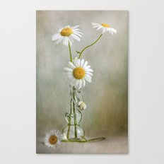Still life with Daisies Canvas Print