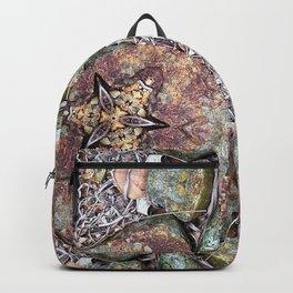 Rock Garden #1 Backpack