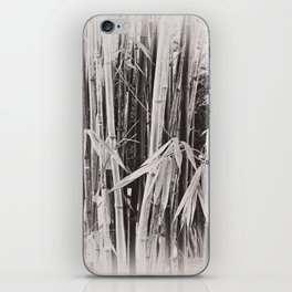 Beautiful bamboo in sepia iPhone Skin