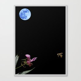 Luna, Bee and Flower Minimalist Poster v5 Canvas Print