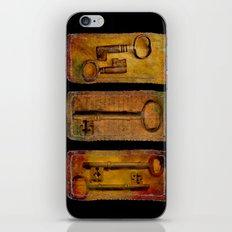 Triptych keys iPhone & iPod Skin