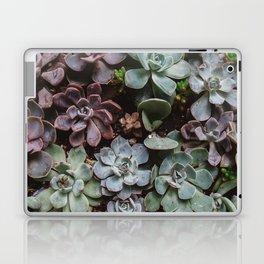 Succulent Paradise Laptop & iPad Skin
