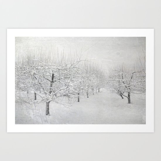 Winter Apple Orchard Art Print