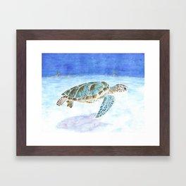 Sea turtle underwater Framed Art Print