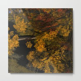 Autumn Leaves and Stream Metal Print