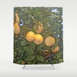 Lemon tree full of lemons Shower Curtain