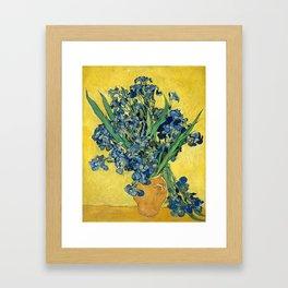 Vincent van Gogh - Irises, 1890 Framed Art Print