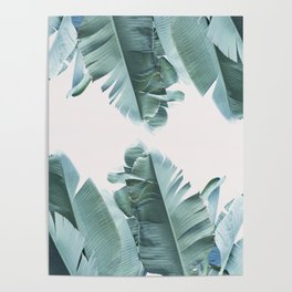 Blue Tropical Banana Leaf Plant Poster