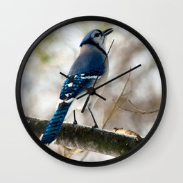 Blue Jay Calling Wall Clock