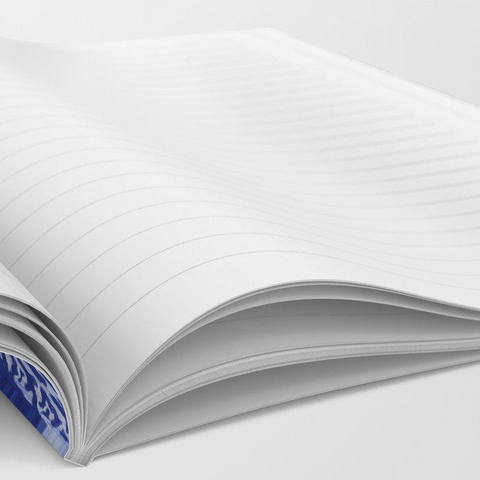 Evolution II Notebook