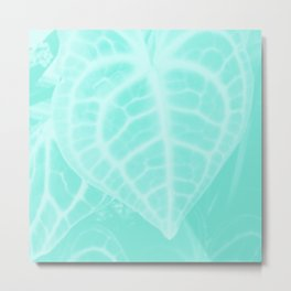 Crushed Mint Metal Print