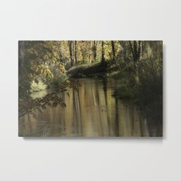 Clearlake Park Willamette River Metal Print
