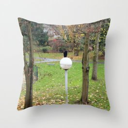Le globe du corbeau. Throw Pillow