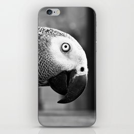 Pretty Bird iPhone Skin