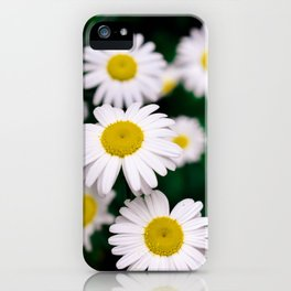 Pushing Up Daisies iPhone Case