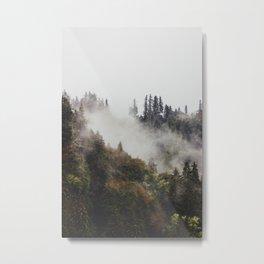 Washington Fog Metal Print