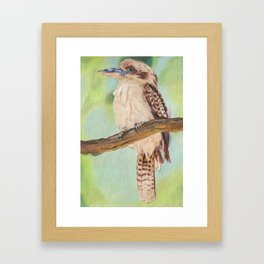 Kookaburra, Australian Bird Framed Art Print