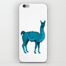 guanaco iPhone & iPod Skin