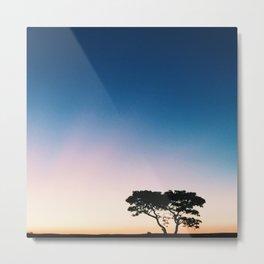 Africa Safari Sunset  Metal Print