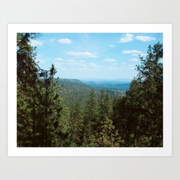 Above The Northwest Wild Art Print