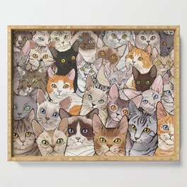 A lot of Cats Serving Tray