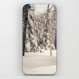 Winter Woods 2 iPhone Skin
