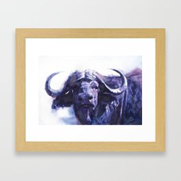 Botswana Buffalo Framed Art Print