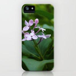 In Solitude iPhone Case