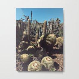 cactus blob friends Metal Print