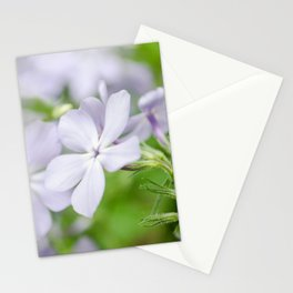 Soft Focus Phlox Carolina Botanical / Nature / Floral Photograph Stationery Cards