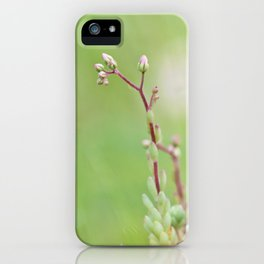 Nature simplicity iPhone Case