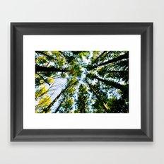 Circle of Nature Framed Art Print