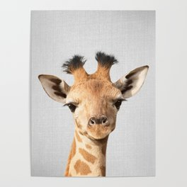 Baby Giraffe - Colorful Poster