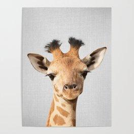 Baby Giraffe - Colorful Poster