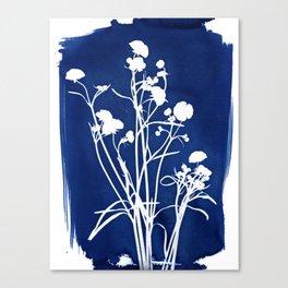 Buttercups - Cyanotype Canvas Print