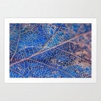lovely leaf vein Art Print