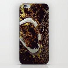 Round and Round iPhone & iPod Skin