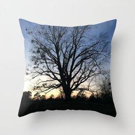 arkansas spring at sunset Throw Pillow
