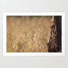 Summer Grass and Tree Art Print