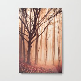 Forest2 Metal Print