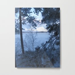 Frosty lake view Metal Print